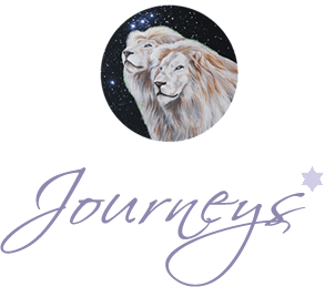 StarLion Journeys