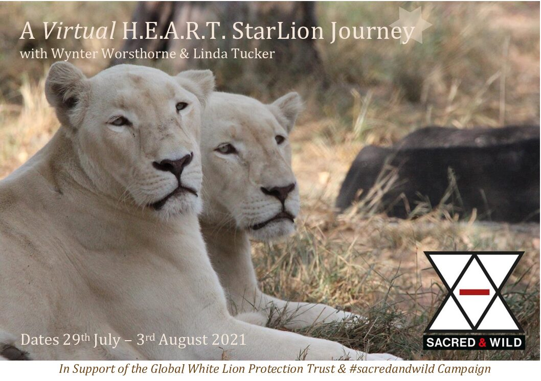 Virtual H.E.A.R.T.Starlion Journey 29 July – 3 August 2021